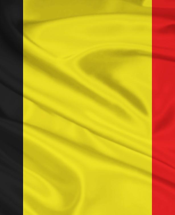 ویژگی های آموزش و پرورش بلژیک