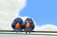 کارتون پرنده های جذاب قسمت اول